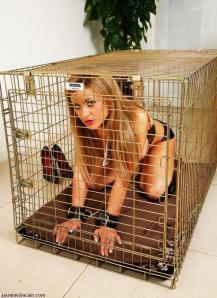 Jasmine Sinclair - New Pet