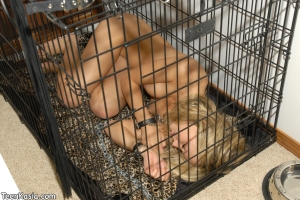 Kasia - Sleeping pet
