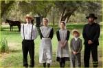 Expecting Amish 2014b