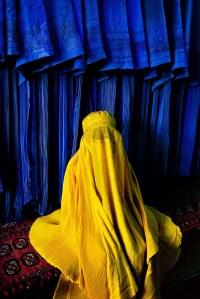 Canary burqa