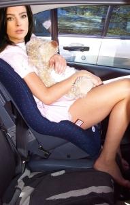 A car ride