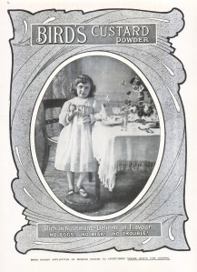 Birds Custard Powder Advertisement - Play Pictorial - 1904