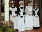 Maid selection 1