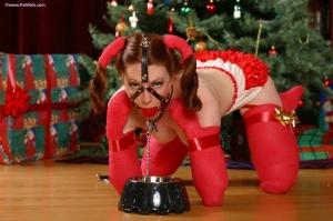 Christmas greetings from Santa's pet