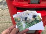Postcard to a friend1