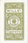 Maude Fealy (Wills's Cigarettes) 1904back
